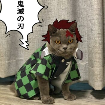 Demon Slayer – Different Characters Themed Cool Pet Cloaks (6 Designs) Cosplay & Accessories