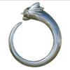 Oxide Silver